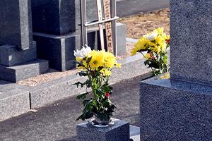 既存墓所の返却